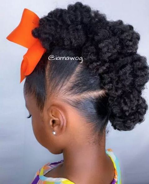 Braids Hairstyles For Little Girls