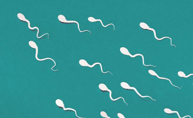 How to Fix low sperm count