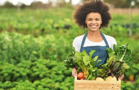 Top 10 Most Profitable Agricultural Business in Nigeria
